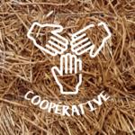 Icône Coopérative
