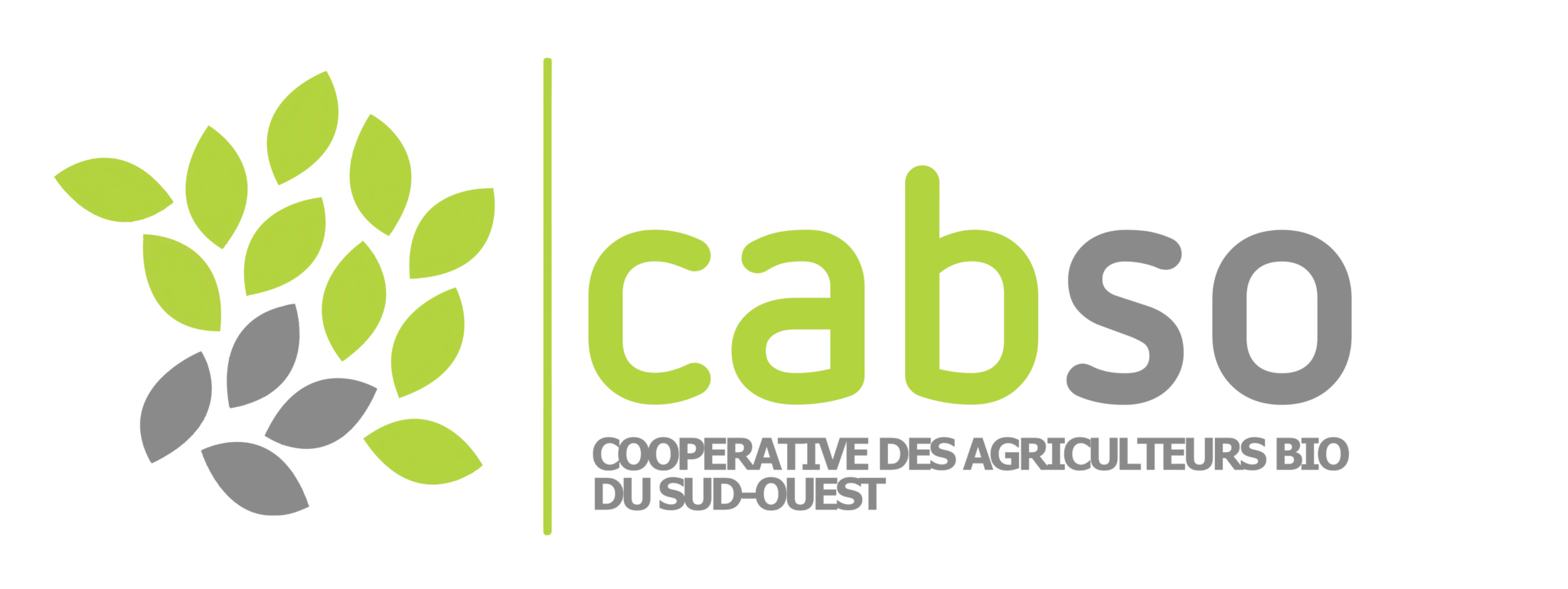 Logo Cabso